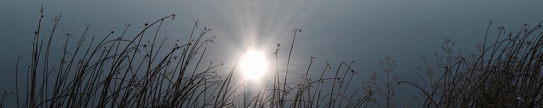 SunWater_ban